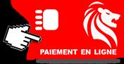icone_ paiement-en-ligne