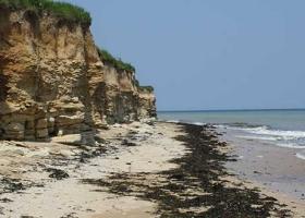 Projet de création d'une Réserve Naturelle Nationale (Falaises de Luc-sur-Mer à Lion-sur-Mer)
