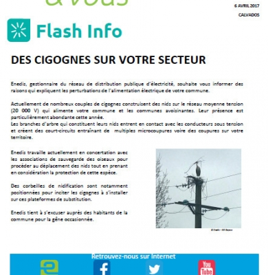 Flash info ENEDIS